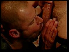 gay gay couple anal sex oral sex blowjob