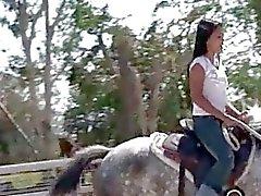 aziatisch buiten paard
