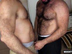 suga bögen homofile gay hunkar bögen män gayvänligt