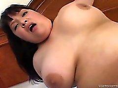 asian bbw hardcore
