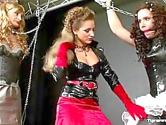 bdsm bondage ballgag femdom female-submissive