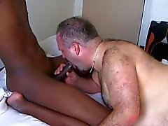 gay gay couple mature interracial hairy