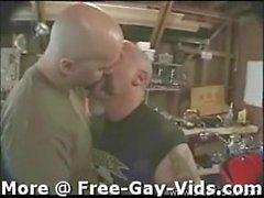 gay homo homosexual gays homosexuals