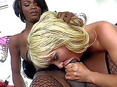 black booty black tits black trannies black tranny