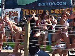 big boobs blonde brunette