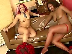 black and ebony fat lesbian strapon