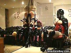 amateur shamale ladyboys shamale masturbation shamale shemales shamale solo shamale
