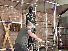 bdsm gay fetish gay gays gay hd gays gay twinks gay