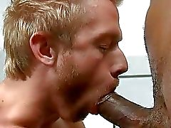 big dick stora homosexuella dicks bigcock